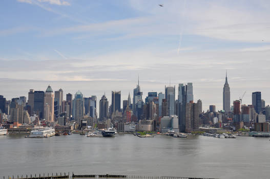 New York Stock 7