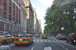 Central Park Stock 135