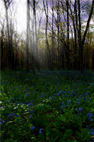 Premade Background 189 by FairieGoodMother