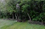 Blue Ridge Mountains Stock 32