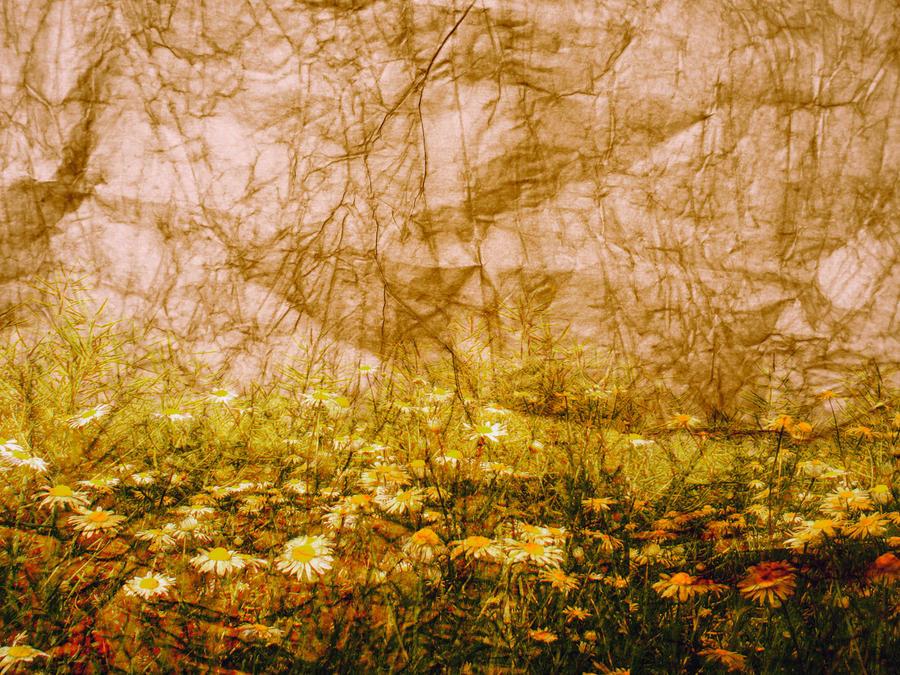 Textured Background 3