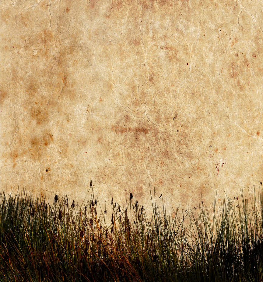 wallpapers and texture on - photo #45