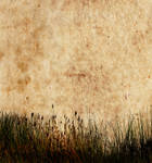 Textured Background 7