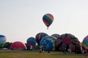 NJ Balloon Festival 1