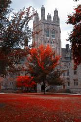 Yale University Stock 27 by FairieGoodMother
