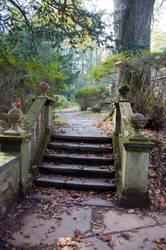 Ridley Creek Park Stock 8