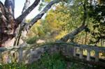 Ridley Creek Park Stock 10