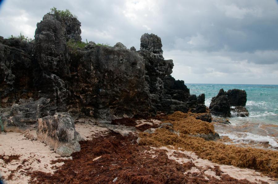 Bermuda 241 by FairieGoodMother