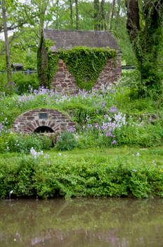 along the canal stock 06