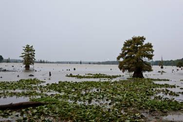 Lake Conway Ark 08