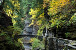 Ithaca in the Fall stock 024