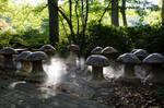Winterthur Encanted Garden 03
