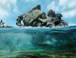 Beneath the Ocean's Surface