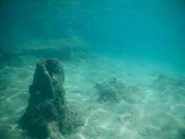 Bermuda 064  Underwater Stocks by FairieGoodMother