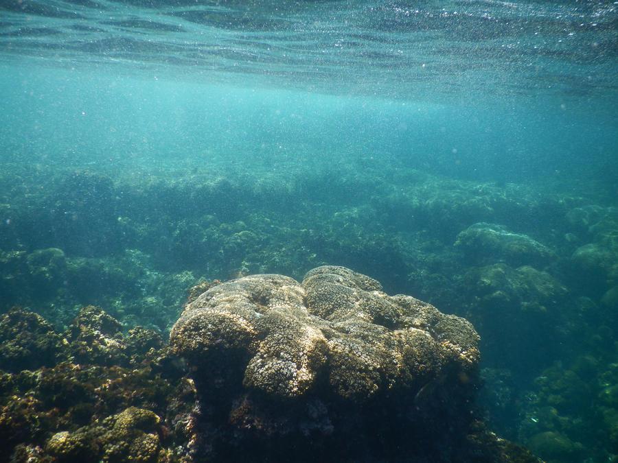 Panama Canal underwater stock 013