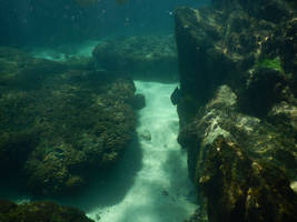 Panama Canal underwater stock 006 by FairieGoodMother