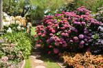 Garden Stock 11