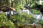 Fairytale Garden 06