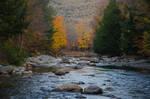 White Mountains  Fall Foliage  181
