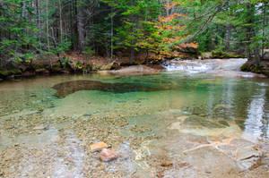 White Mountains  Fall Foliage  266 by FairieGoodMother