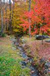 White Mountains  Fall Foliage  172