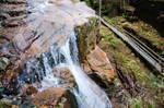 White Mountains  Fall Foliage  062