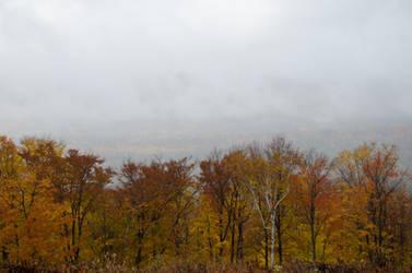 White Mountains  Fall Foliage  003 by FairieGoodMother