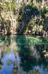 Florida Blue Springs