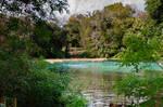 Florida  Rainbow Springs