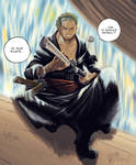 Zorro Roronoa 2Y later