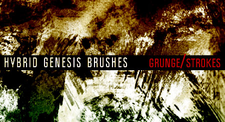 Photoshop Grunge Brushes by In5omn1ac