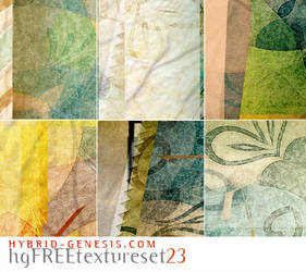 HG Free Texture Set 23 by In5omn1ac