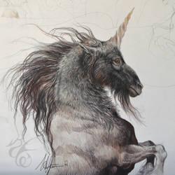 Black Unicorn Sketch by Fabeltier