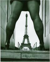 Taking Paris by pasha1