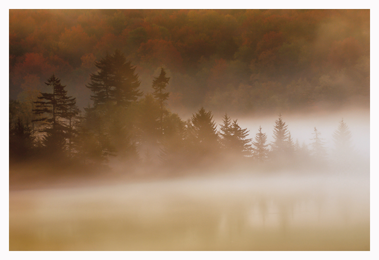 Morning Mist by joerossbach