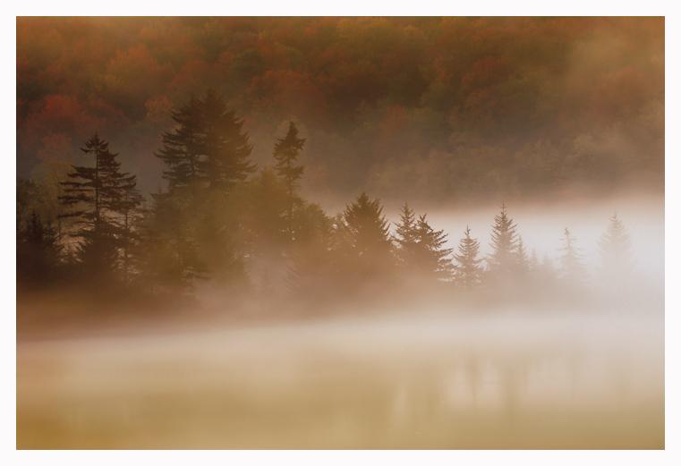 Morning Mist by joerossbach
