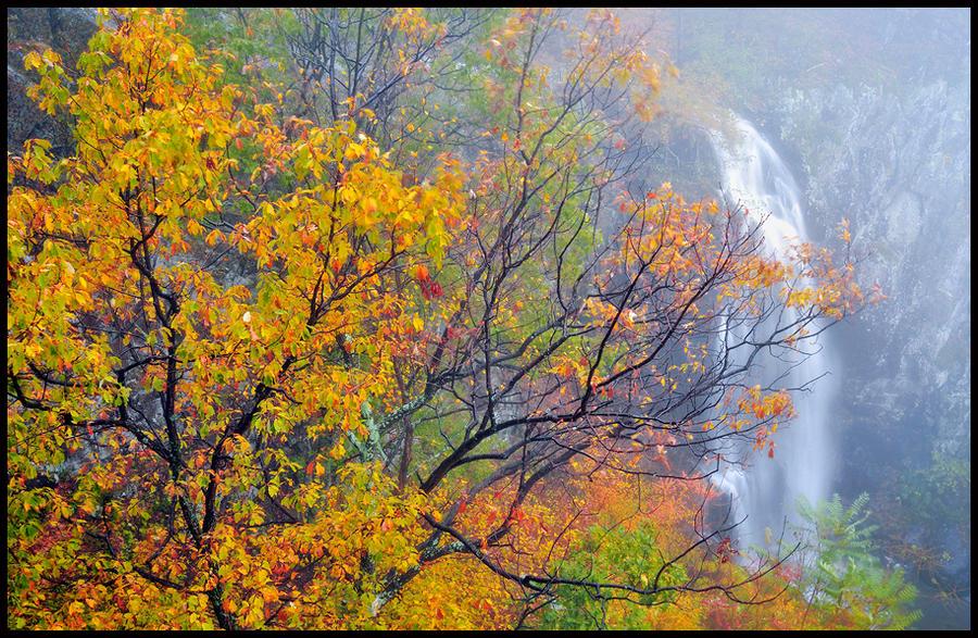 Cloudland Falls by joerossbach