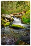 Swirling Fork Falls by joerossbach