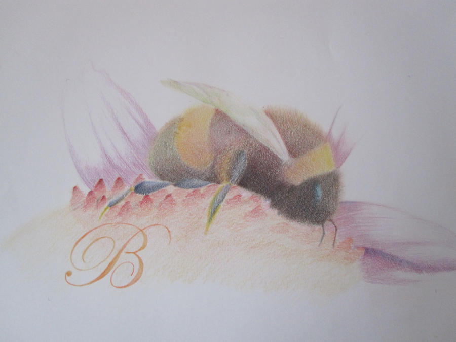 Eric the Bee