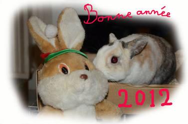 Happy New Year 2012 by Speedymartin