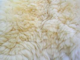 Fur - Alpaca by FossilFeather