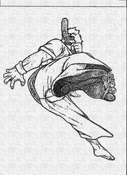 Ryu Master