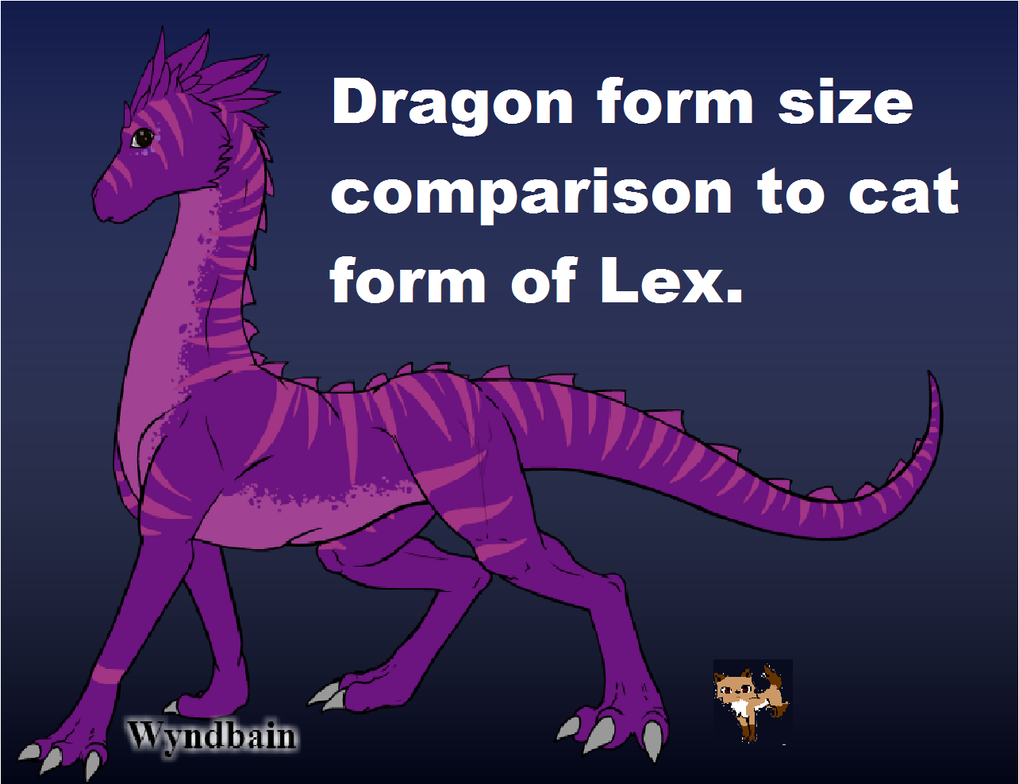 Dragon Size by lexiepoo15