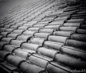 Roof by Asasj23 2014