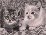 Two kittens on a couch