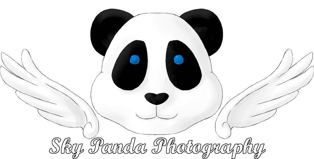 Sky Panda Photography by Midnight-Dark-Angel