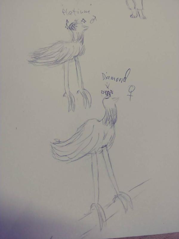 Birds by BLOODYALICE22