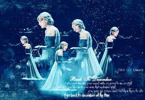 20101112 Taylor Swift by EdwardHuaBin
