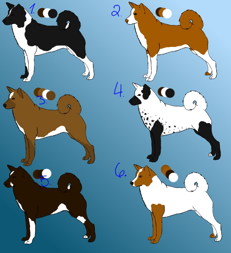 Nintendogs Mutt And Friends 118182343 also Miniature Bull Terrier 164994241 further Thais Saarloos Wolfdog 342451928 as well STS Dog Saxo 295072866 further Malmute Husky Dog Pet Lover. on dog breed prints