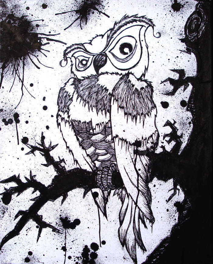 Inked Owl: Archimedes